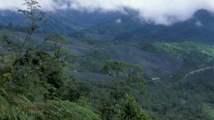 Menaces sur les forêts tropicales et équatoriales