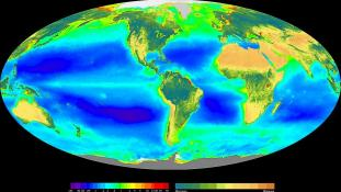 «Seawifs global biosphere» par Provided by the SeaWiFS Project, Goddard Space Flight Center and ORBIMAGE — http://oceancolor.gsfc.nasa.gov/SeaWiFS/BACKGROUND/Gallery/index.html and from en:Image:Seawifs global biosphere.jpg. Sous licence Domaine public
