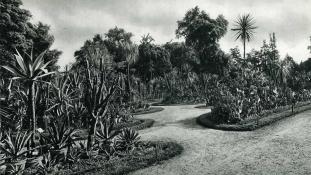 Histoire du jardin mexicain