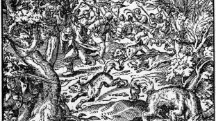 """Wolfhunt1582"". Licensed under Public Domain via Wikimedia Commons - https://commons.wikimedia.org/wiki/File:Wolfhunt1582.jpg#/media/File:Wolfhunt1582.jpg"