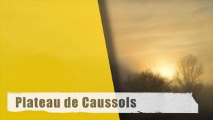 Plateau de Caussols