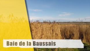 Baie de la Baussais
