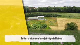 Toiture et zone de rejet végétalisées