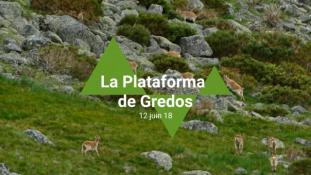 2018-Sierra de Gredos-05/11