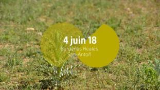 Bardenas Reales - San-Anton-5/10