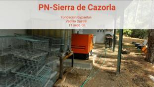 2008-Sierra de Cazorla-8/20