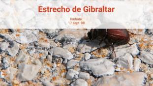 2008-Estrecho de Gibraltar-14/20