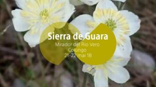 2018-Mirador del Rio Vero-1/3