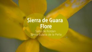 2018-Salto de Roldan-Flore-3/3