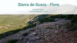 2018-Salto de Roldan-Flore-2/3