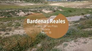 2018-Bardenas Reales-7/10