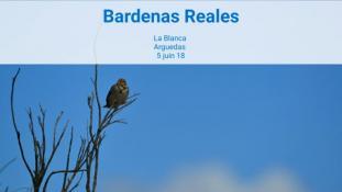2018-Bardenas Reales-9/10