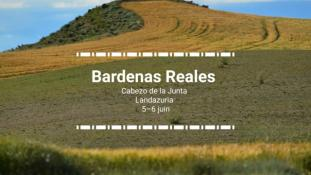 2018-Bardenas Reales-10/10