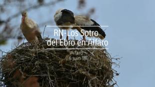 2018-Ebro en Alfaro-1/2