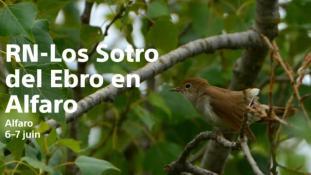 2018-Ebro en Alfaro-2/2