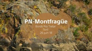 2018-Parc de Montfrague-07/53