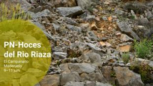 2018-PN-Rio Riaza-2/2