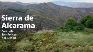 2018-Sierra de Alcarama-2/2