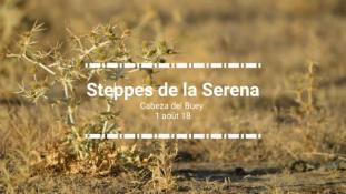 2018-Steppes de la Serena-4/4