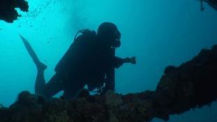 Marseille, le monde sous-marin - Episode 2-1