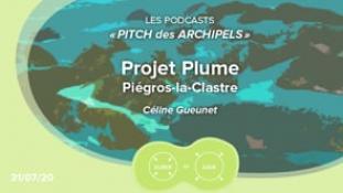Pitch des Archipels-Plume