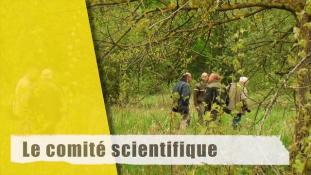 Le Comité scientifique