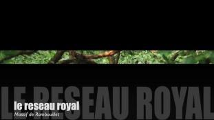 Teaser-Forêt de Rambouillet
