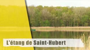 L'étang de Saint-Hubert