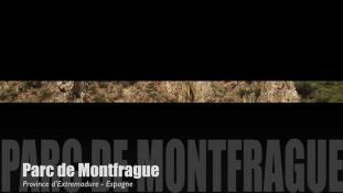 Teaser-Montfragüe