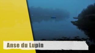 Timlaps-Anse du Lupin