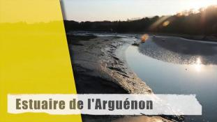 Timlaps-Arguenon