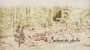 Série-Apprendre la nature #09