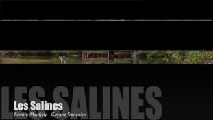 Teaser-Les Salines
