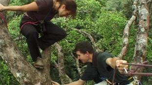 Voyage en canopée - Episode 4