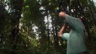 Voyage en canopée - Episode 6