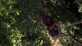 Voyage en canopée - Episode 8