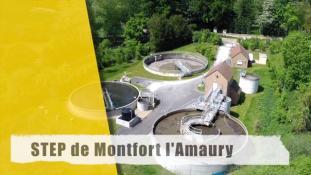 Step-Montfort