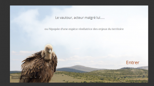 """Visuel de la page d'accueil du webdoc """"Logiques d'acteurs: le vautour acteur malgré lui"""""""